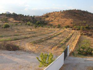 property line casa da osga tavira