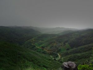 foggy hills tavira