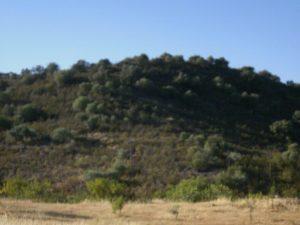 hills view at casa da osga tavira